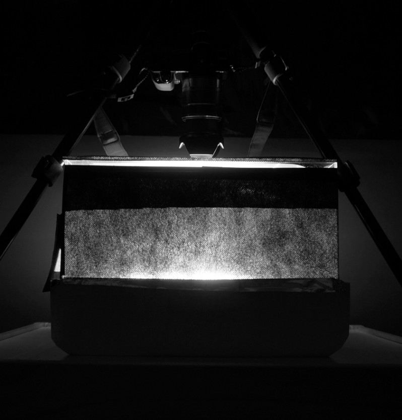 Expoziția Fusion : AIR 2021 – Structuri convertibile. Patru instalații multimedia transpun concepte științifice în artă.