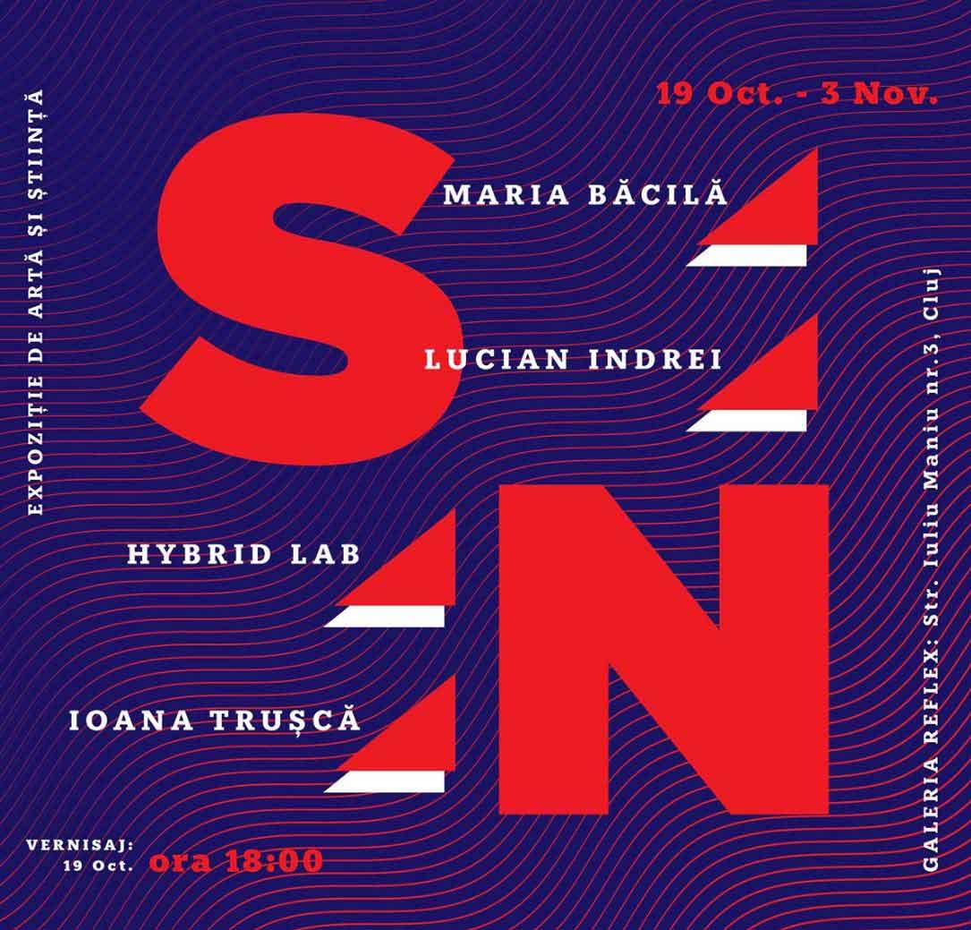 The Unseen - abordarea constructivistă a creării de sensuri. Cluj, 19 oct - 3 nov.