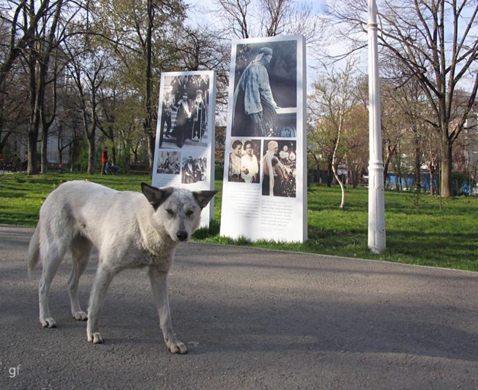 Expoziție permanentă - Parc regina Maria, strada Turda, București